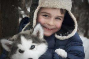 Husky Kinderhund