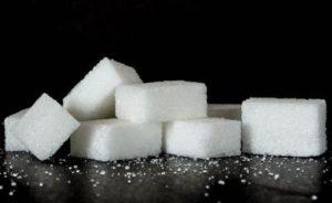 Welpenfutter ohne Zucker