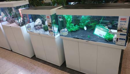 Aquarium mit Unterschrank Test