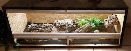 großes terrarium vergleich