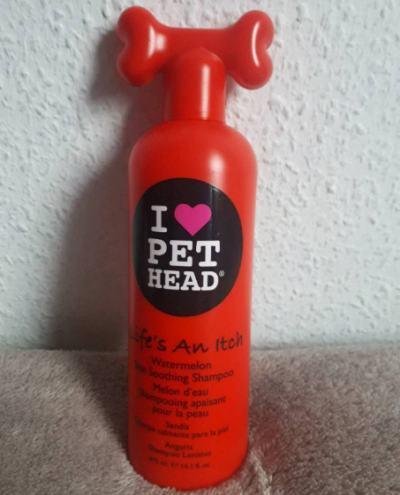 shampoo fuer hunde