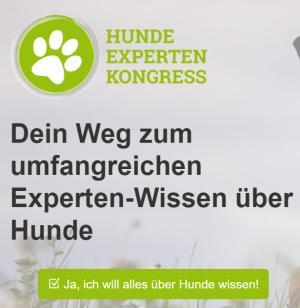 Hundeerziehung online kurs