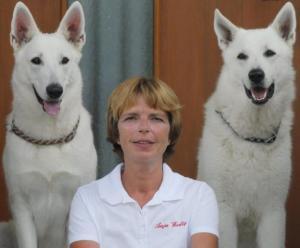 Online Hundeschule Anbieter Vergleich