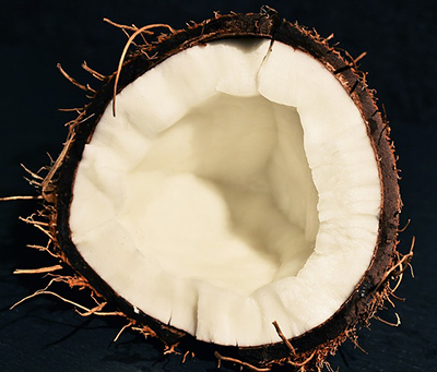 Kokosöl für Hunde kaufen