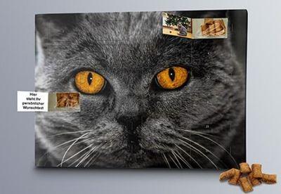 Katzen Foto-Adventskalender mit Foto der Katze