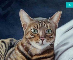 katzen gemaelde portrait malen