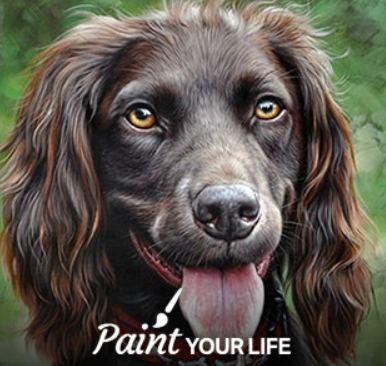 hundeportrait malen